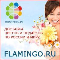 Партнерская программа Фламинго